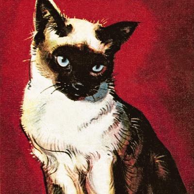 https://imgc.artprintimages.com/img/print/siamese-cat_u-l-pciqjv0.jpg?p=0