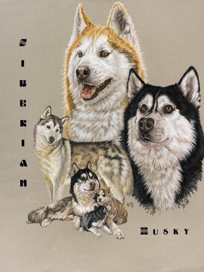 Siberian Husky-Barbara Keith-Giclee Print