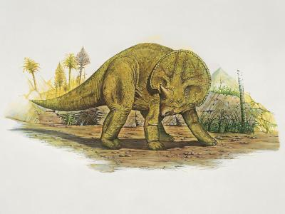 Side Profile of a Dinosaur--Photographic Print