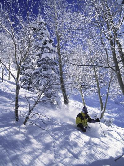 Side Profile of a Man Skiing--Photographic Print