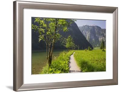 Sidewalk, King's Lake, National Park Berchtesgaden, Berchtesgadener Land District, Bavaria, Germany-Rainer Mirau-Framed Photographic Print