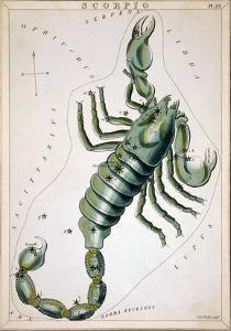 Constellation: Scorpio by Sidney Hall