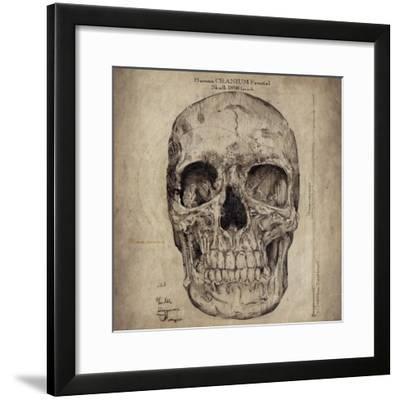 Cranium III