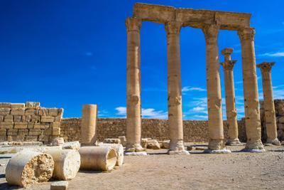 Columns of the Ruins of Syrian Town Palmyra, UNESCO World Heritage Site by siempreverde22