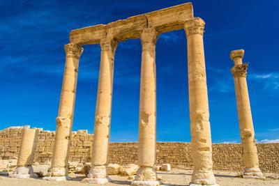 Grec-Roman Columns of Palmyra, Syria by siempreverde22