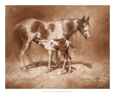Sienna Paint-Jack Sorenson-Art Print