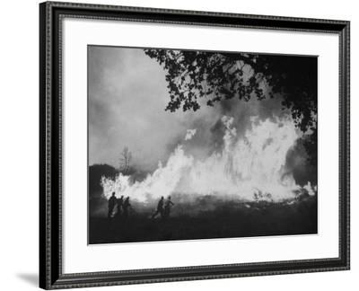 Sierra Forest Fire-Ralph Crane-Framed Photographic Print