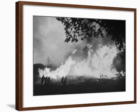 Sierra Forest Fire-Ralph Crane-Framed Photographic Print