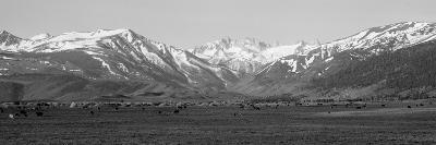Sierra Mountains, California--Photographic Print