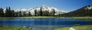 Sierra Nevada Mountains Yosemite National Park Ca