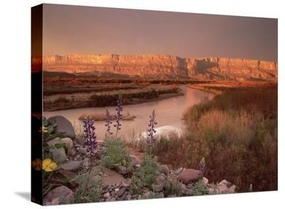Sierra Ponce and Rio Grande, Big Bend National Park, Texas-Tim Fitzharris-Stretched Canvas Print