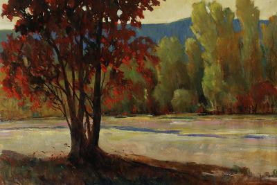 Sign of Fall II-Tim O'toole-Giclee Print