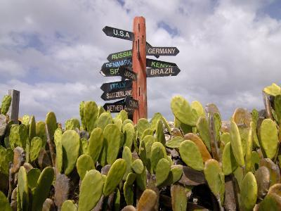 Signpost Standing Among Cactuses, Barbados, West Indies, Caribbean, Central America-Michael Runkel-Photographic Print