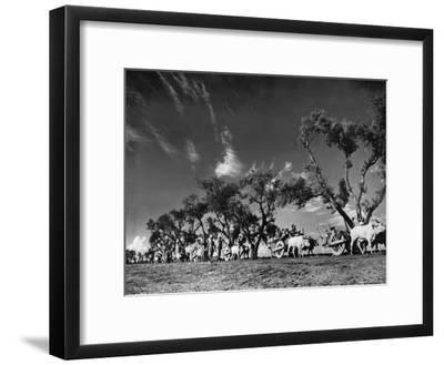 Sikhs Migrating to Hindu Section of Punjab After the Partitioning of India-Margaret Bourke-White-Framed Premium Photographic Print