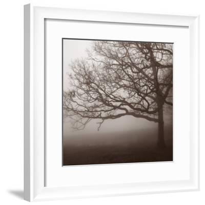 Silence-Erin Clark-Framed Art Print