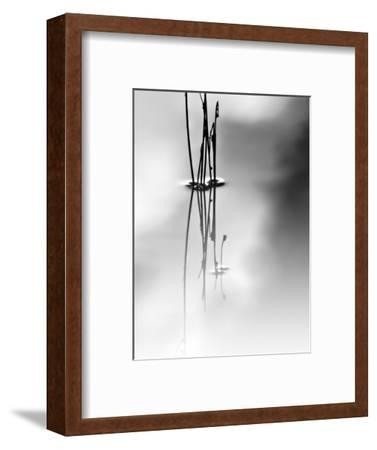Silence-Ursula Abresch-Framed Premium Photographic Print