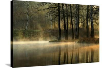 Silent Light.-Agnieszka Jankowska-Stretched Canvas Print