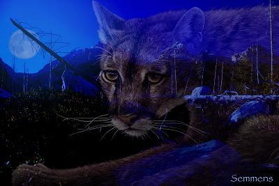 Silent Night 2-Gordon Semmens-Giclee Print
