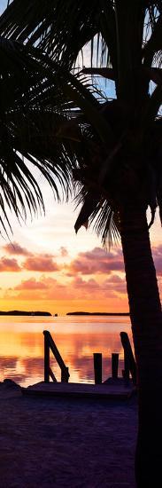 Silhouette at Sunset - Florida-Philippe Hugonnard-Photographic Print