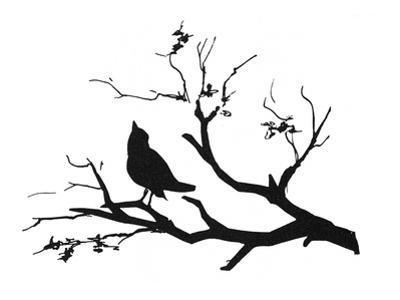 Silhouette: Bird on Branch