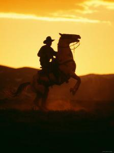 Silhouette of a Cowboy Riding a Bucking Horse and Kicking Up Dust