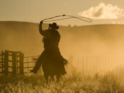 Silhouette of A Wrangler Swinging Lasso, Ponderosa Ranch, Seneca, Oregon, USA-Wendy Kaveney-Photographic Print