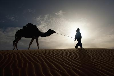 Silhouette of Berber Leading Camel across Sand Dunes at Dusk in the Erg Chebbi-Design Pics Inc-Photographic Print