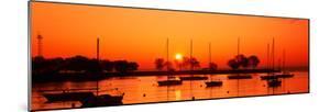 Silhouette of Boats in a Lake, Lake Michigan, Great Lakes, Michigan, USA