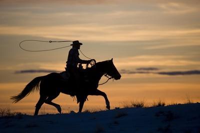 https://imgc.artprintimages.com/img/print/silhouette-of-cowboy-in-wyoming_u-l-pznzso0.jpg?p=0