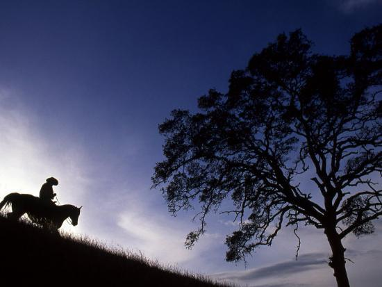 Silhouette of Cowboy, Picabo, Idaho-Kate Thompson-Photographic Print