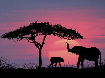 Silhouette of Elephants and Tree-David Davis-Photographic Print