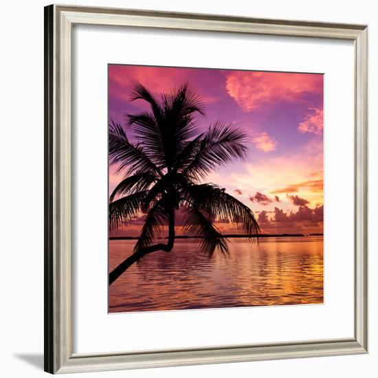 Silhouette of Palm Tree at Sunset-Philippe Hugonnard-Framed Photographic Print