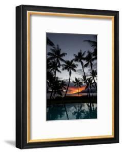 Silhouette of palm trees at dusk, Lahaina, Maui, Hawaii, USA