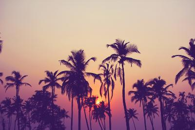 Silhouette of Palm Trees at Sunset, Vintage Filter-grop-Photographic Print
