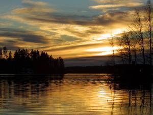 Silhouette of Trees with Reflection of Sun in Lake at Sunset