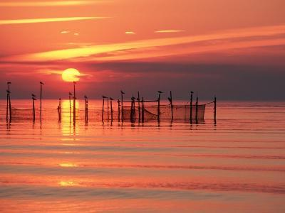 Silhouetted Fishing Net at Sunset-Lowell Georgia-Photographic Print