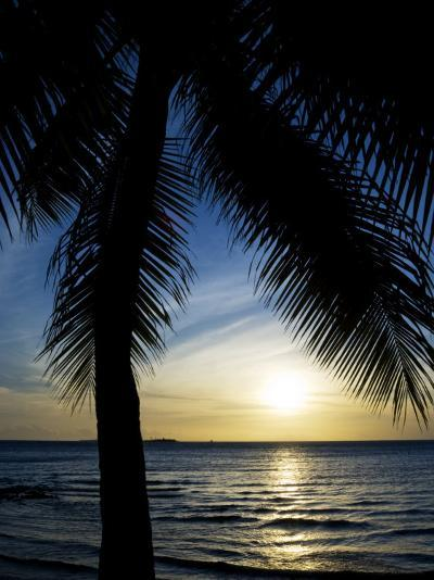 Silhouetted Palm Tree and Gentle Surf at Twilight-Mattias Klum-Photographic Print