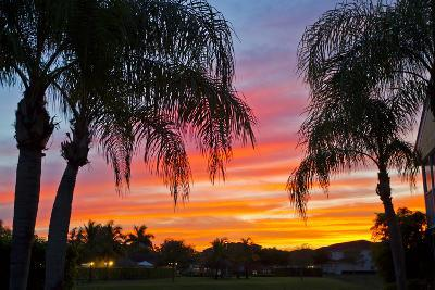 Silhouetted Palm Trees and a Colorful Sky over Coastal Homes at Sunset-Mike Theiss-Photographic Print