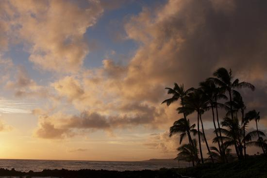 Silhouetted Palm Trees and Pinkish Clouds at Sunset on Poipu Beach-Marc Moritsch-Photographic Print