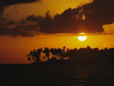 Silhouetted Palm Trees and Sun Behind Clouds at Twilight-Tim Laman-Photographic Print