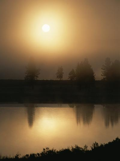 Silhouetted Trees Along the Yellowstone River at Sunrise-Tom Murphy-Photographic Print