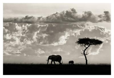 Silhouettes of Mara-Mario Moreno-Art Print