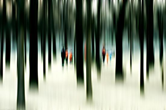 Silhouettes of People Between Trees-Bastian Kienitz-Photographic Print