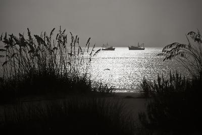 Silhouettes of Sea Oats and Shrimp Boats-Joseph Shields-Photographic Print
