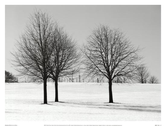 Silhouettes Of Winter I-Ilona Wellmann-Art Print