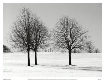 https://imgc.artprintimages.com/img/print/silhouettes-of-winter-i_u-l-f8im380.jpg?p=0