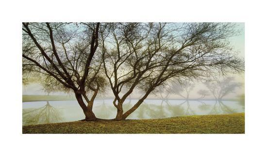 Silhouetts In Fog-Loren Soderberg-Giclee Print