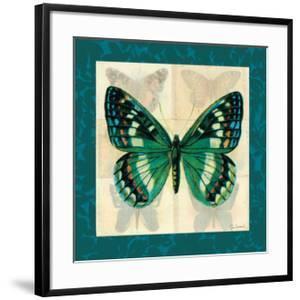 Silk Butterfly II