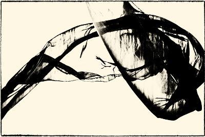 Silk Ink V-Tang Ling-Art Print