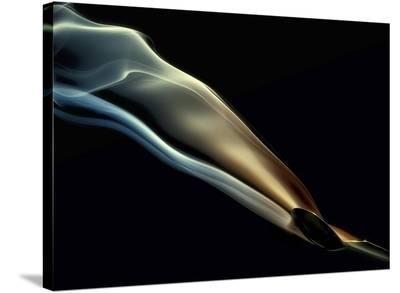 Silk-Aida Ianeva-Stretched Canvas Print
